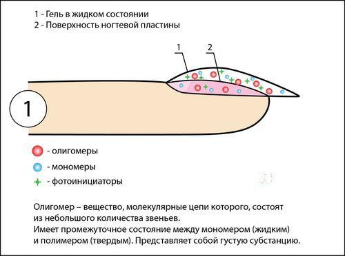 Химический состав гель лака